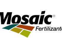 Mosaic Fertilizantes participa de audiência pública para licenciamento do projeto de alteamento da Barragem BR em Tapira